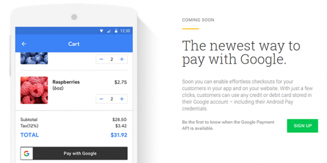 Google new payment