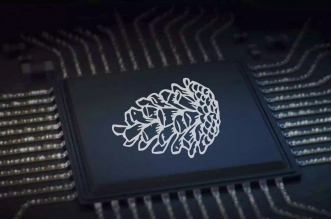 Xiaomi Pinecone chip