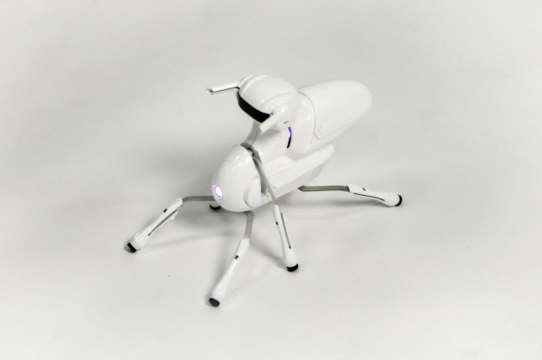 Antbo-Insect-robot