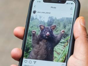 WEB INSTAGRAM Instagram gets browser notification