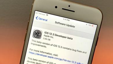 First iOS 12.3 beta