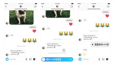 Instagram Direct - support-voice messages