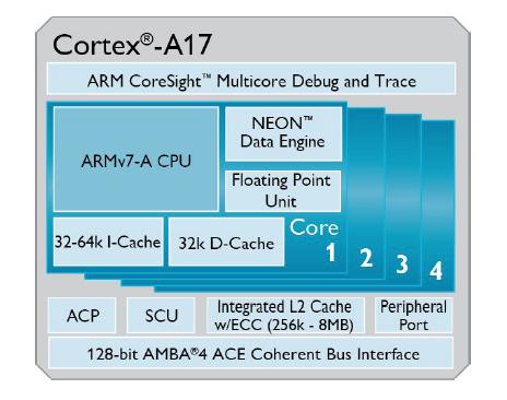 cortexa17