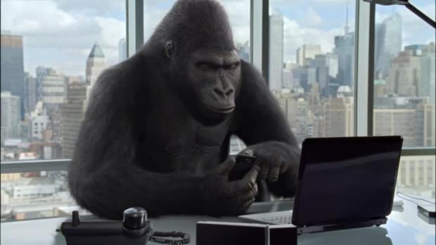 gorilla-glass-nbt-office-