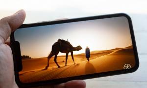 iphone-XR-diplay