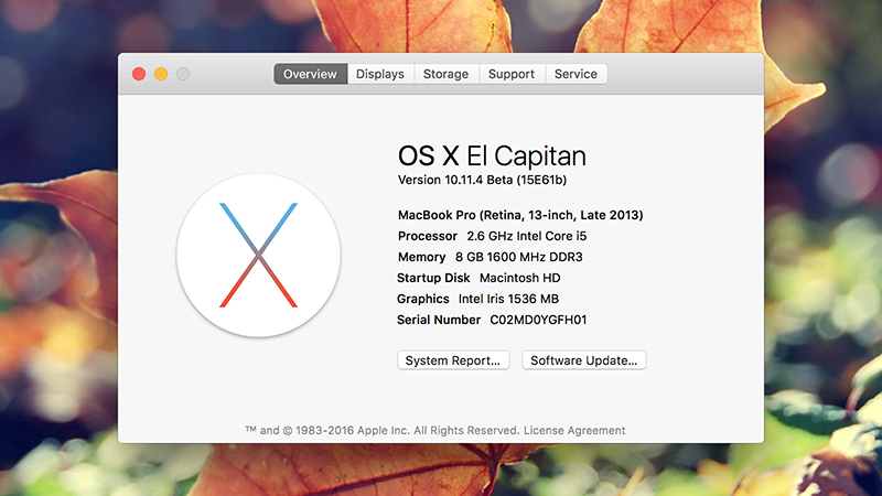 software- up to date-Mac